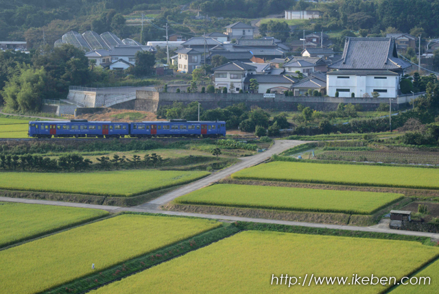 長与駅付近のお寺